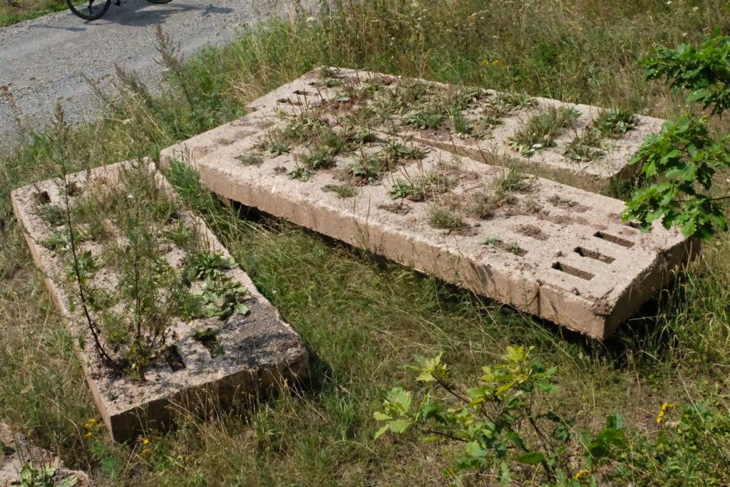 Grünes Band Archäologie der Betonplatten