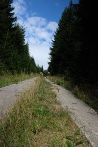 Grünes Band im Harz