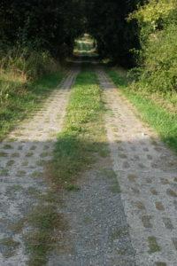Grünes Band Radtour Plattenweg