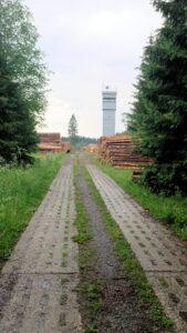 Grünes Band Grenzturm bei Sorge Kolonnenweg